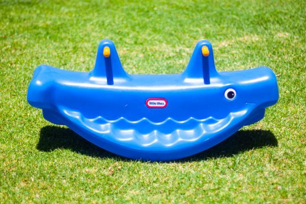 image of the blue whale seesaw