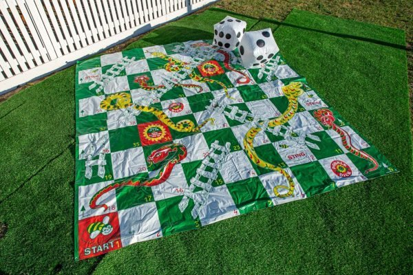 This is an image of Giant Snakes and Ladders